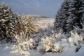 zbb-winter-02