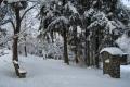 zbb-winter-03
