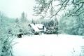 zbb-winter-08